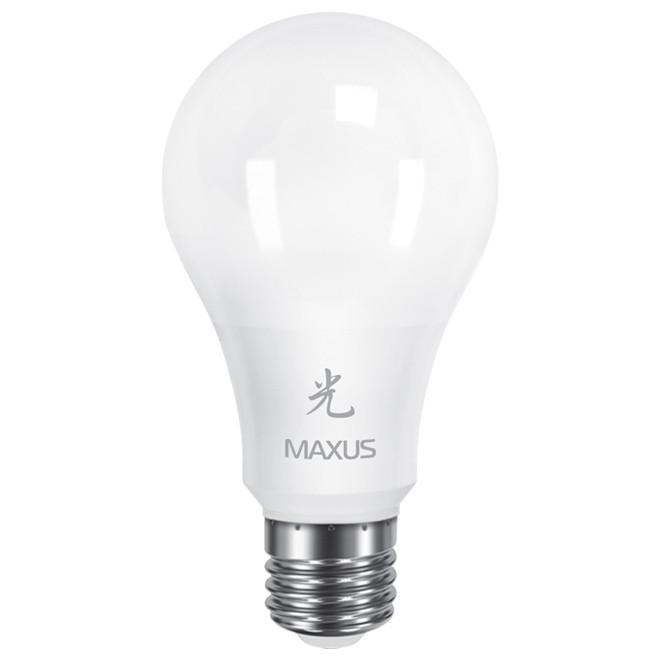 Магазин Рекордмаркет: Освещение и электрика.