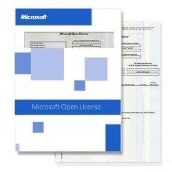 Exchange Online Plan 2 Open Shared Server Single Language (Q6Z-00003)