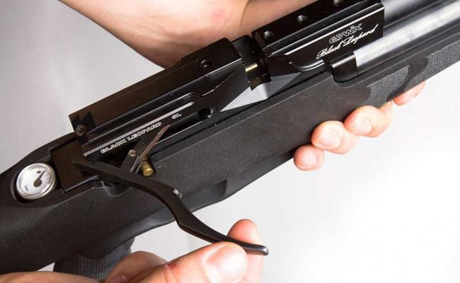 какую купить пневматическую винтовку