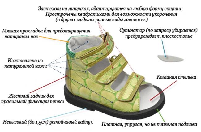 341131f41 Как выбрать обувь ребенку | Какую хорошую детскую обувь выбрать для ...
