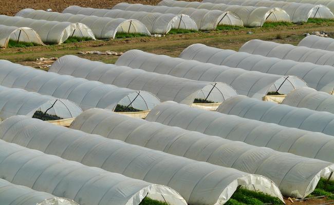 агроволокно купить в украине